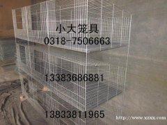 供应鸡鸽兔笼 鹌鹑笼 鹧鸪笼 兔子笼 鸽子笼 育雏鸡笼 蛋鸡